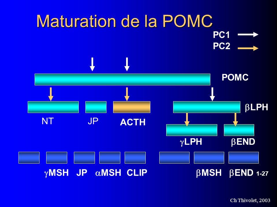Ch Thivolet, 2003 Maturation de la POMC POMC NTJP ACTH LPH END MSH JP MSH CLIP MSH END 1-27 PC1 PC2