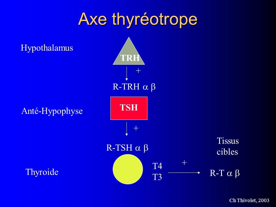Ch Thivolet, 2003 Hypersécrétion dADH Tableau dintoxication par leau Hyponatrémie Osmolarité plasmatique basse et ADH très élevée Tableau amélioré par la restriction hydrique (<500ml/24h) Cancers bronchiques, lésions du SNC, anesthésiques, opiacés, surdosage en ADH