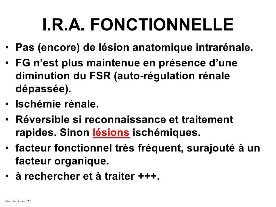 Module 14 item 252 I.R.A. FONCTIONNELLE Pas (encore) de lésion anatomique intrarénale. FG nest plus maintenue en présence dune diminution du FSR (auto