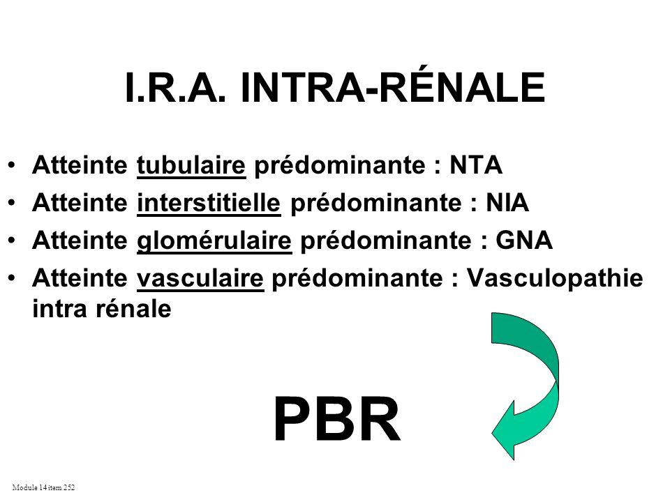 Module 14 item 252 I.R.A. INTRA-RÉNALE Atteinte tubulaire prédominante : NTA Atteinte interstitielle prédominante : NIA Atteinte glomérulaire prédomin