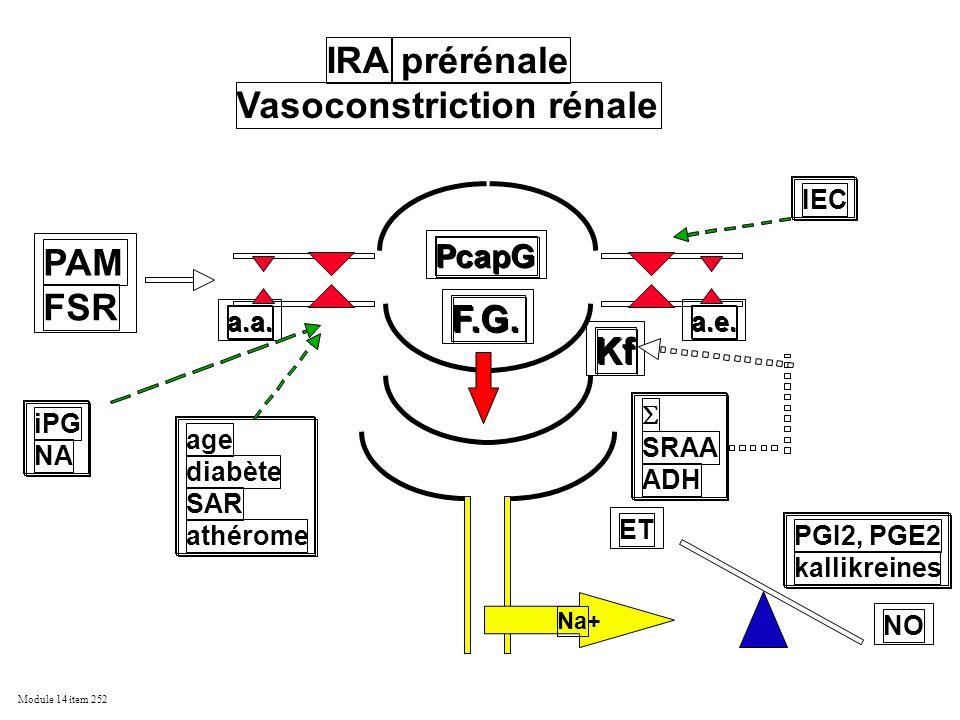 Module 14 item 252 F.G. Kf PAM FSR PcapG a.a. a.e. IRA prérénale Vasoconstriction rénale SRAA ADH PGI2, PGE2 kallikreines iPG NA age diabète SAR athér