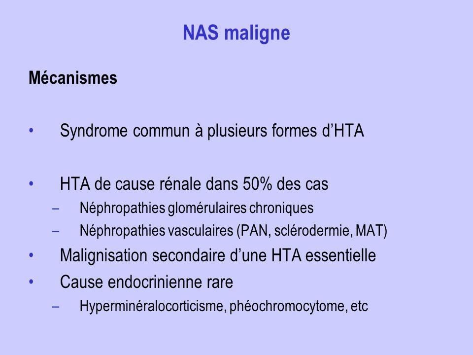 NAS maligne Mécanismes Syndrome commun à plusieurs formes dHTA HTA de cause rénale dans 50% des cas –Néphropathies glomérulaires chroniques –Néphropat