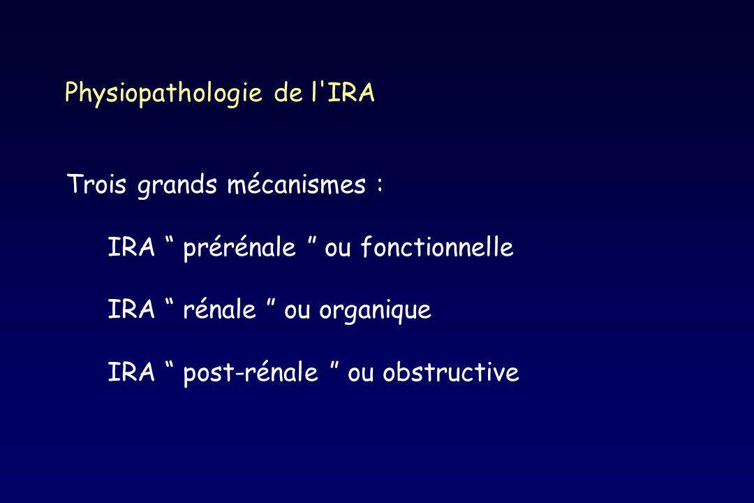 Physiopathologie de l'IRA Trois grands mécanismes : IRA prérénale ou fonctionnelle IRA rénale ou organique IRA post-rénale ou obstructive