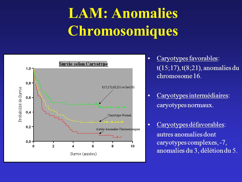 LAM: Anomalies Chromosomiques Caryotypes favorables: t(15;17), t(8;21), anomalies du chromosome 16. Caryotypes intermédiaires: caryotypes normaux. Car