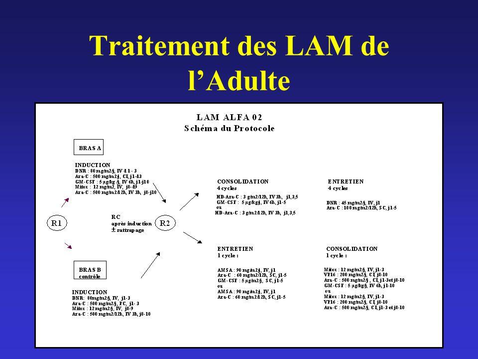 Traitement des LAM de lAdulte