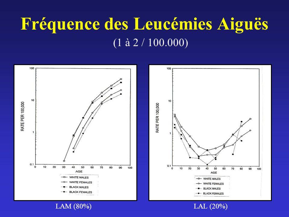 Fréquence des Leucémies Aiguës (1 à 2 / 100.000) LAM (80%)LAL (20%)