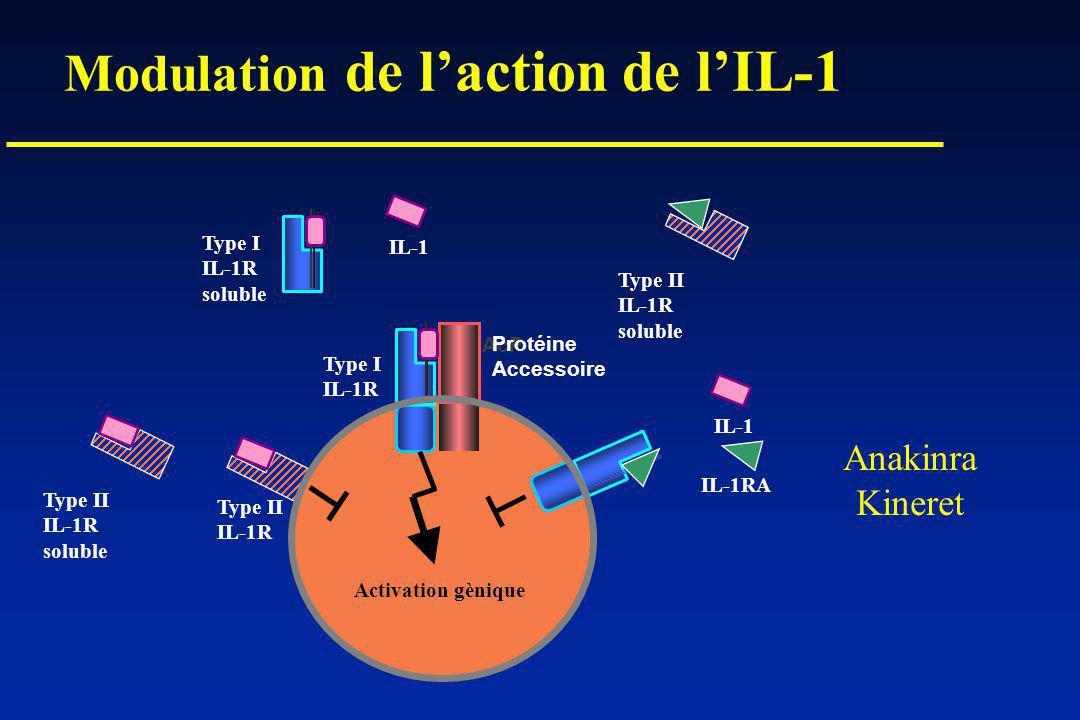 Modulation de laction de lIL-1 AcP Protéine Accessoire IL-1 IL-1RA Type I IL-1R Type II IL-1R Type I IL-1R soluble Type II IL-1R soluble Type II IL-1R soluble Activation gènique Anakinra Kineret IL-1
