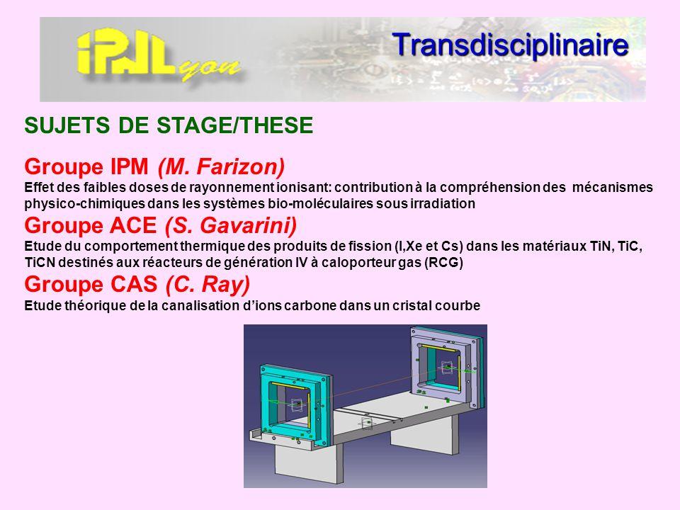 Transdisciplinaire SUJETS DE STAGE/THESE Groupe IPM (M. Farizon) Effet des faibles doses de rayonnement ionisant: contribution à la compréhension des