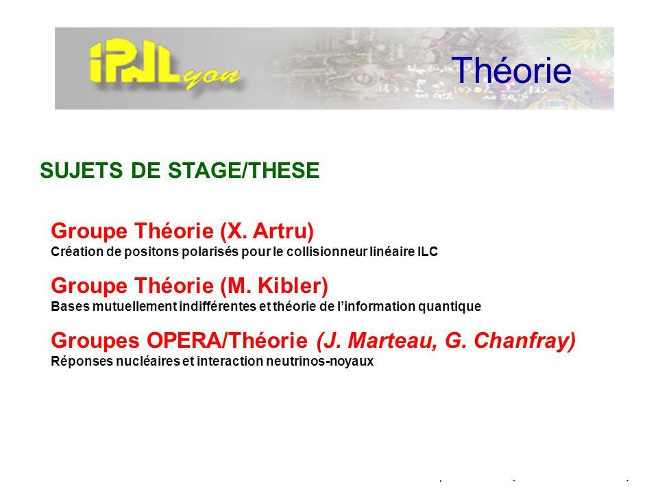 IPNL-Direction / AdministrationTourniquet à 4 ans (4 & 5 novembre 2002) Théorie Groupe Théorie (X. Artru) Création de positons polarisés pour le colli
