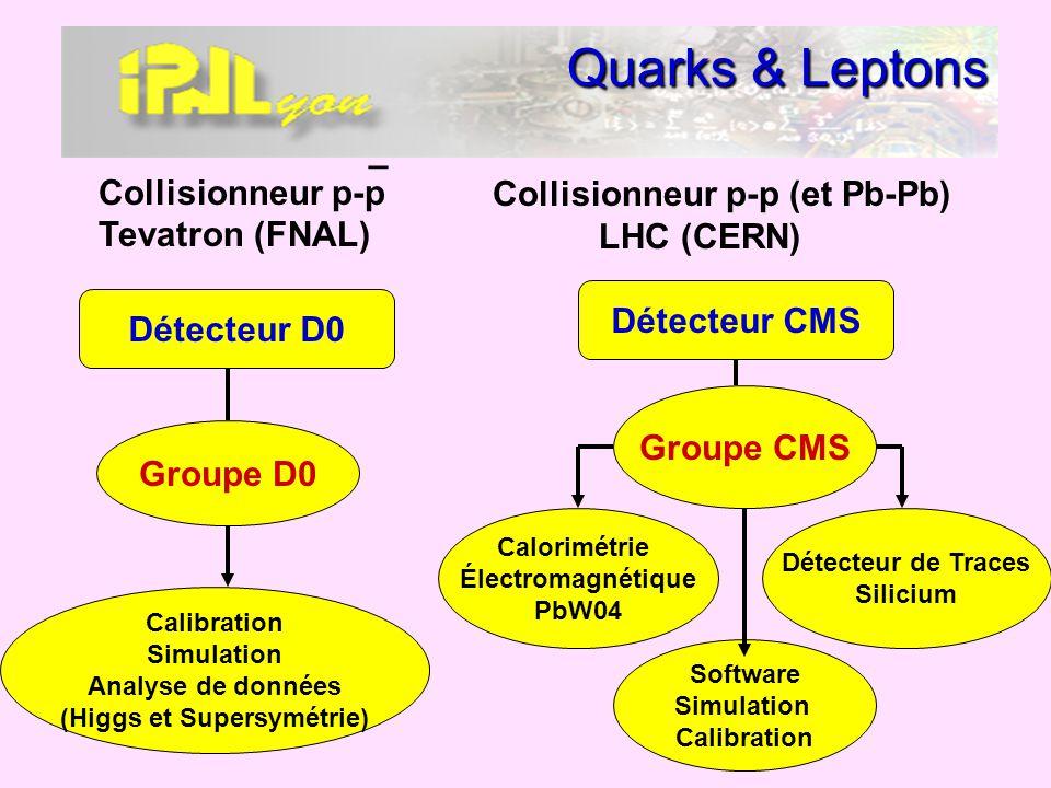 Quarks & Leptons _ Collisionneur p-p Tevatron (FNAL) Détecteur D0 Calibration Simulation Analyse de données (Higgs et Supersymétrie) Groupe D0 Collisi