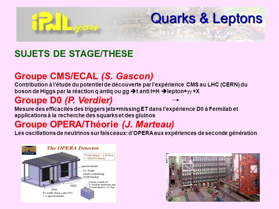 Quarks & Leptons SUJETS DE STAGE/THESE Groupe CMS/ECAL (S. Gascon) Contribution à létude du potentiel de découverte par lexpérience CMS au LHC (CERN)