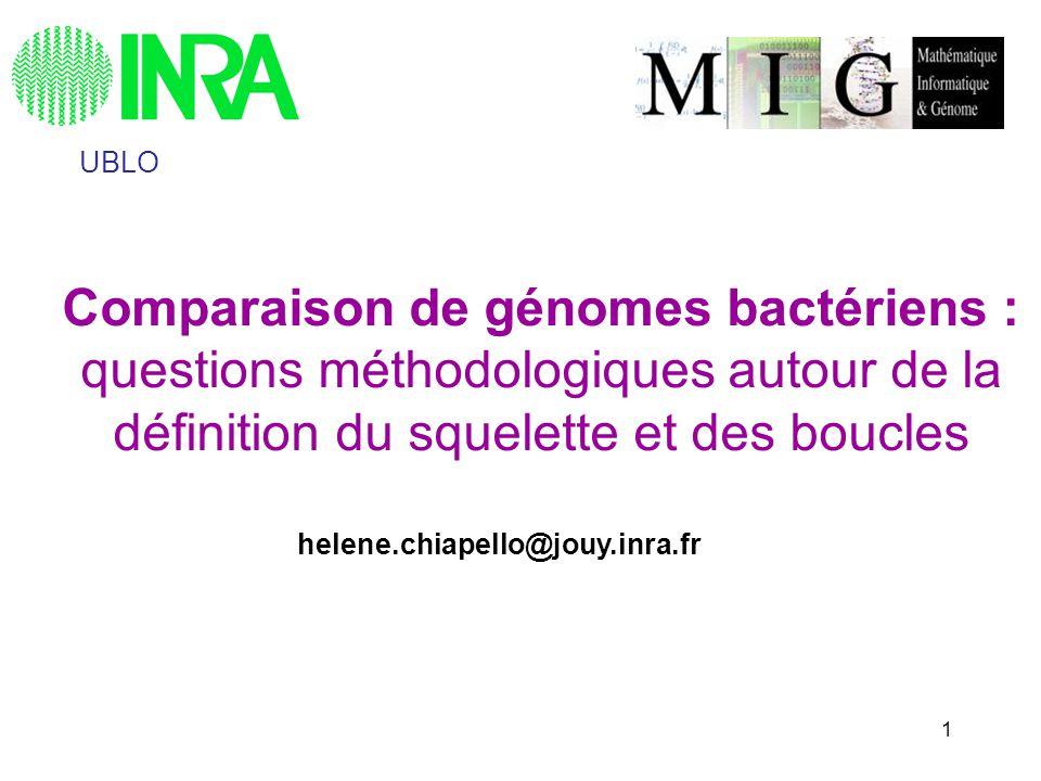 2 Le projet MOSAIC MOSAIC* version 3: 87 comparaisons, 24 espèces bactériennes Comparaison aux annotations (GenomeReview+autres) Visualisation graphique (MuGeN) http://genome.jouy.inra.fr/mosaic But: déterminer systématiquement la structure squelette- boucles des génomes bactériens à léchelle intra-espèce *Chiapello et al.