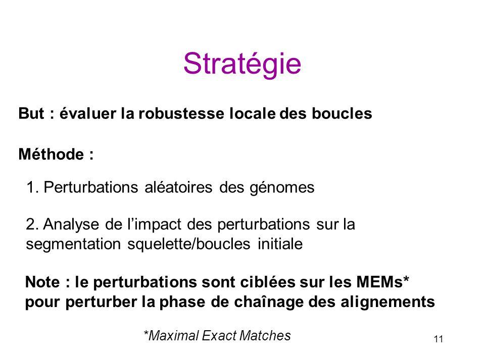 11 Stratégie Méthode : 1. Perturbations aléatoires des génomes 2. Analyse de limpact des perturbations sur la segmentation squelette/boucles initiale