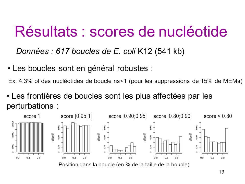 13 Résultats : scores de nucléotide Données : 617 boucles de E. coli K12 (541 kb) Les boucles sont en général robustes : Ex: 4.3% of des nucléotides d