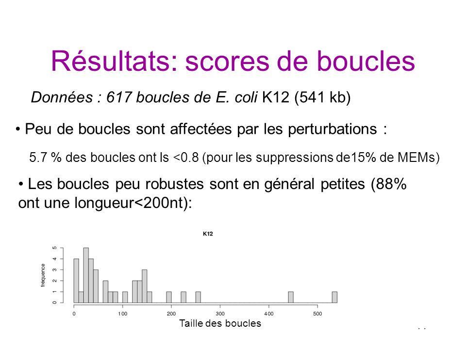 14 Résultats: scores de boucles Peu de boucles sont affectées par les perturbations : 5.7 % des boucles ont ls <0.8 (pour les suppressions de15% de ME