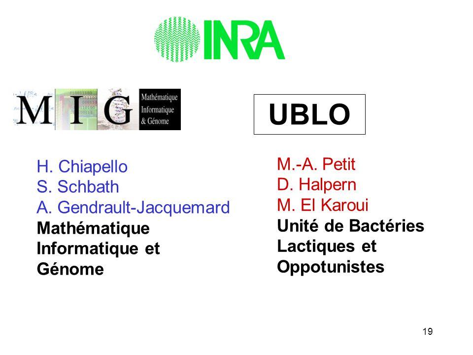19 H. Chiapello S. Schbath A. Gendrault-Jacquemard Mathématique Informatique et Génome M.-A. Petit D. Halpern M. El Karoui Unité de Bactéries Lactique