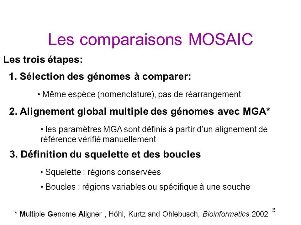 3 Les comparaisons MOSAIC * Multiple Genome Aligner, Höhl, Kurtz and Ohlebusch, Bioinformatics 2002 1. Sélection des génomes à comparer: 2. Alignement