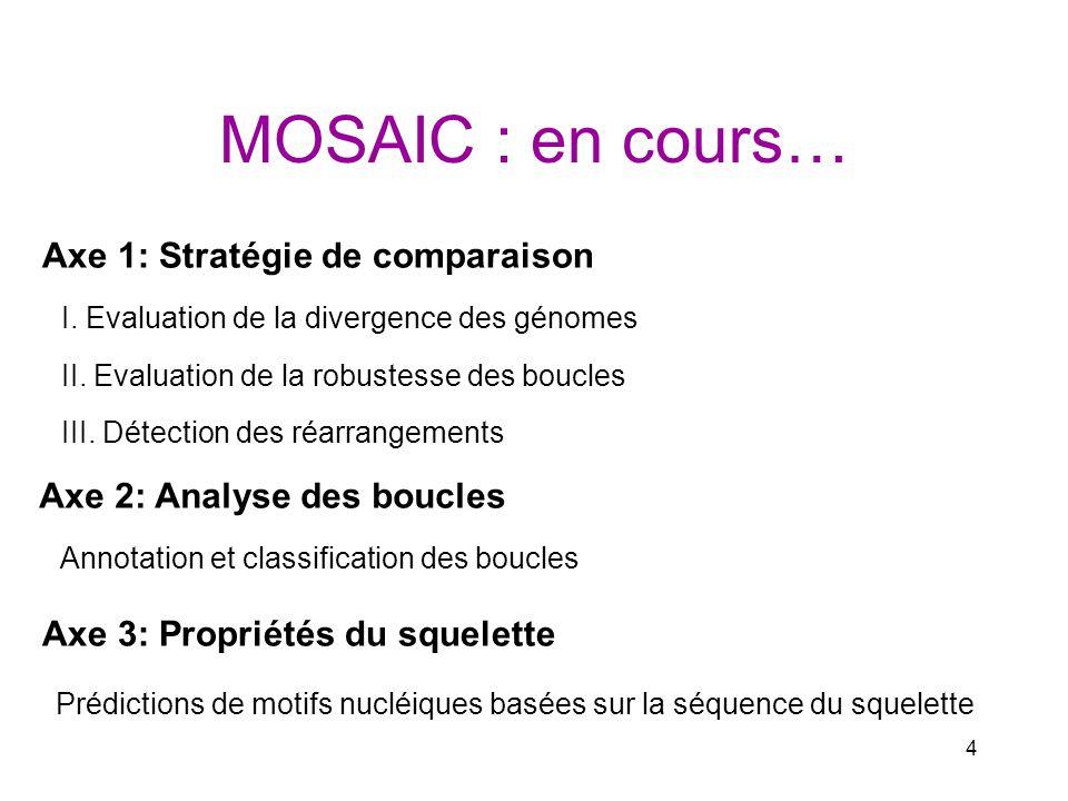 4 MOSAIC : en cours… I. Evaluation de la divergence des génomes II. Evaluation de la robustesse des boucles Annotation et classification des boucles A