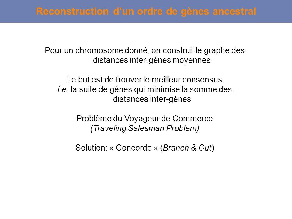 Reconstruction dun ordre de gènes ancestral Pour un chromosome donné, on construit le graphe des distances inter-gènes moyennes Le but est de trouver