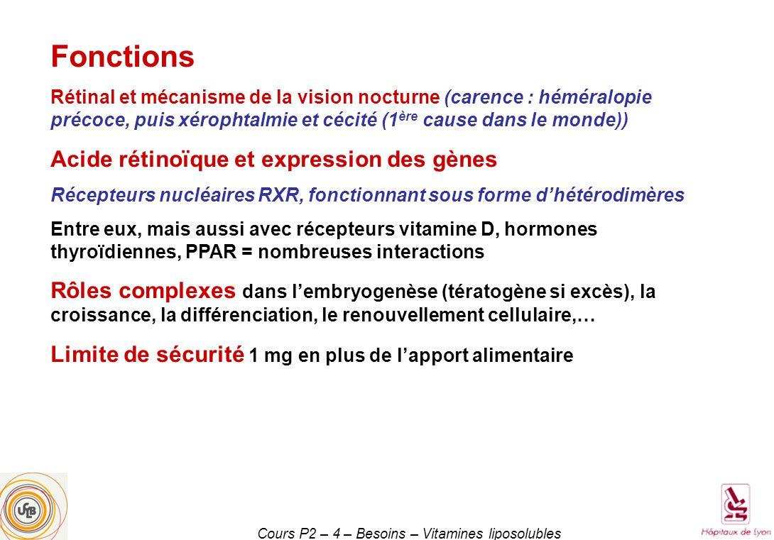Cours P2 – 4 – Besoins – Vitamines liposolubles Fonctions Rétinal et mécanisme de la vision nocturne (carence : héméralopie précoce, puis xérophtalmie et cécité (1 ère cause dans le monde)) Acide rétinoïque et expression des gènes Récepteurs nucléaires RXR, fonctionnant sous forme dhétérodimères Entre eux, mais aussi avec récepteurs vitamine D, hormones thyroïdiennes, PPAR = nombreuses interactions Rôles complexes dans lembryogenèse (tératogène si excès), la croissance, la différenciation, le renouvellement cellulaire,… Limite de sécurité 1 mg en plus de lapport alimentaire