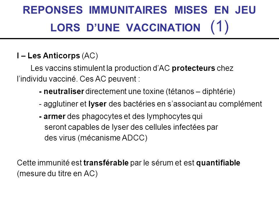REPONSES IMMUNITAIRES MISES EN JEU LORS DUNE VACCINATION (1) I – Les Anticorps (AC) Les vaccins stimulent la production dAC protecteurs chez lindividu