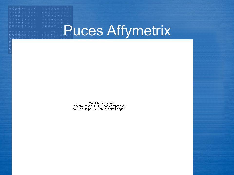Transcriptome Puces Affymetrix