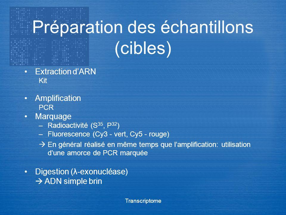 Transcriptome Préparation des échantillons (cibles) Extraction dARN Kit Amplification PCR Marquage –Radioactivité (S 35, P 32 ) –Fluorescence (Cy3 - v