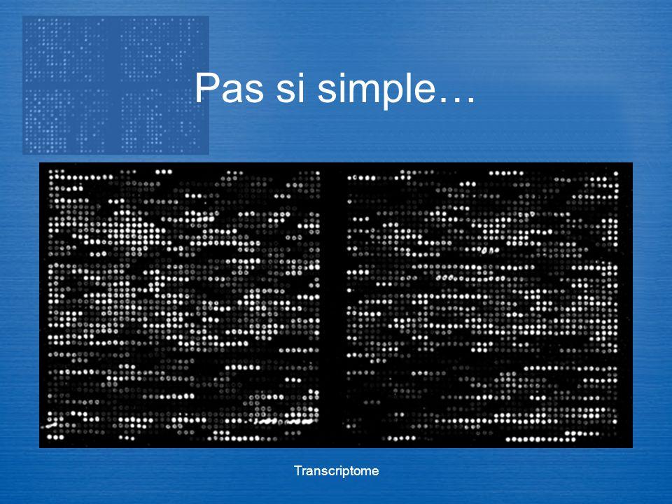 Transcriptome Pas si simple…