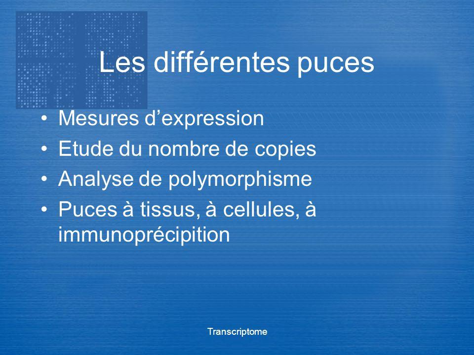 Transcriptome Les différentes puces Mesures dexpression Etude du nombre de copies Analyse de polymorphisme Puces à tissus, à cellules, à immunoprécipi