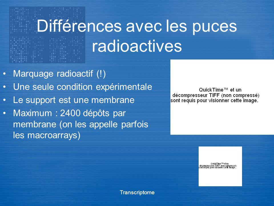 Transcriptome Différences avec les puces radioactives Marquage radioactif (!) Une seule condition expérimentale Le support est une membrane Maximum :