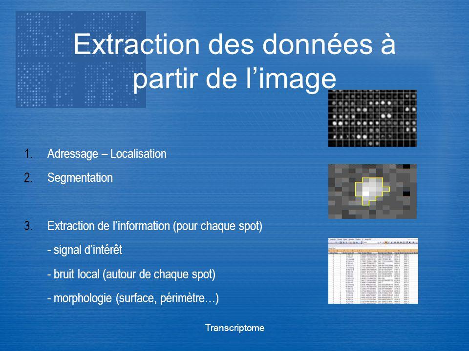 Transcriptome Extraction des données à partir de limage 1.Adressage – Localisation 2.Segmentation 3.Extraction de linformation (pour chaque spot) - si