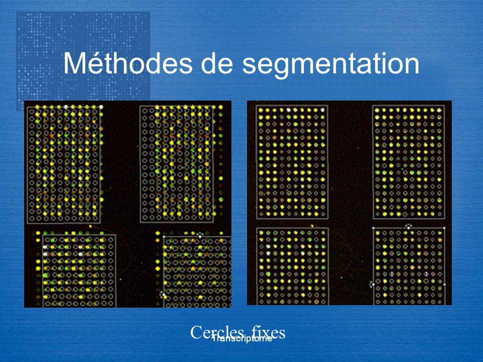 Transcriptome Méthodes de segmentation Cercles fixes