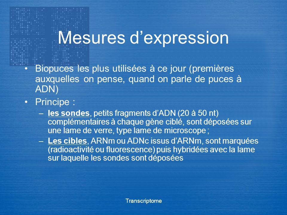 Transcriptome Mesures dexpression Biopuces les plus utilisées à ce jour (premières auxquelles on pense, quand on parle de puces à ADN) Principe : –les