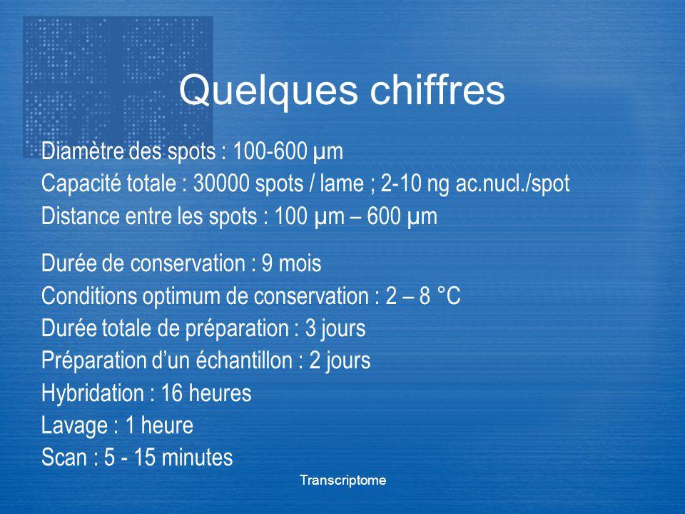 Transcriptome Quelques chiffres Diamètre des spots : 100-600 µm Capacité totale : 30000 spots / lame ; 2-10 ng ac.nucl./spot Distance entre les spots