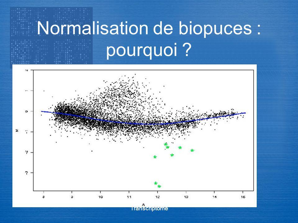 Transcriptome Normalisation de biopuces : pourquoi ?