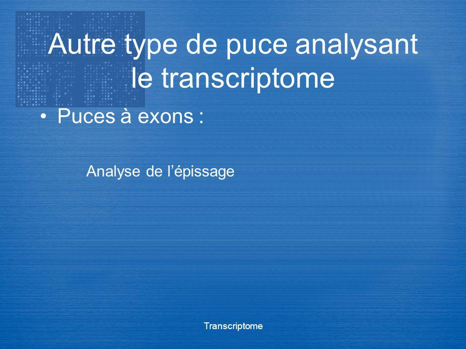 Transcriptome Autre type de puce analysant le transcriptome Puces à exons : Analyse de lépissage