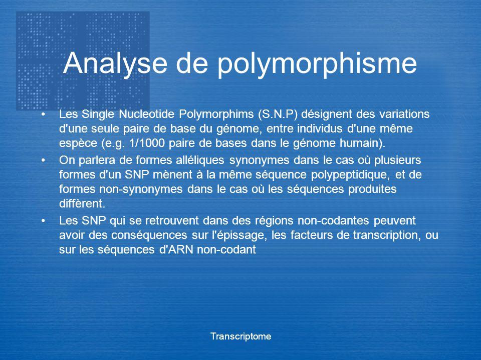 Transcriptome Analyse de polymorphisme Les Single Nucleotide Polymorphims (S.N.P) désignent des variations d'une seule paire de base du génome, entre