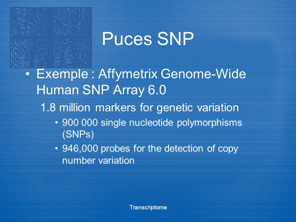 Transcriptome Puces SNP Exemple : Affymetrix Genome-Wide Human SNP Array 6.0 1.8 million markers for genetic variation 900 000 single nucleotide polym