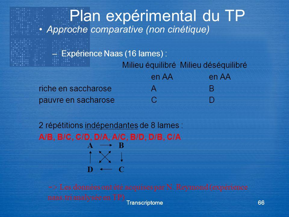 Transcriptome66 Approche comparative (non cinétique) –Expérience Naas (16 lames) : Milieu équilibréMilieu déséquilibréen AA riche en saccharoseAB pauv