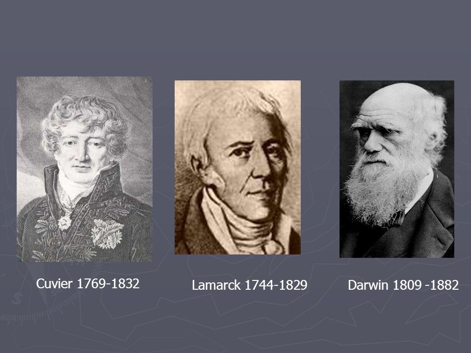 Cuvier 1769-1832 Lamarck 1744-1829Darwin 1809 -1882