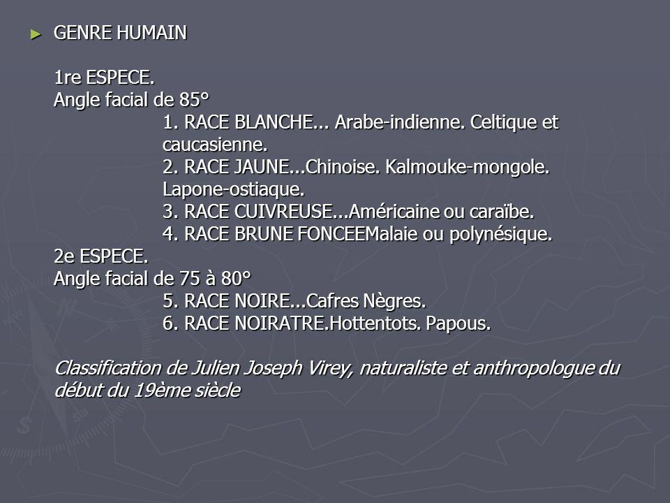 GENRE HUMAIN 1re ESPECE. Angle facial de 85° 1. RACE BLANCHE... Arabe-indienne. Celtique et caucasienne. 2. RACE JAUNE...Chinoise. Kalmouke-mongole. L