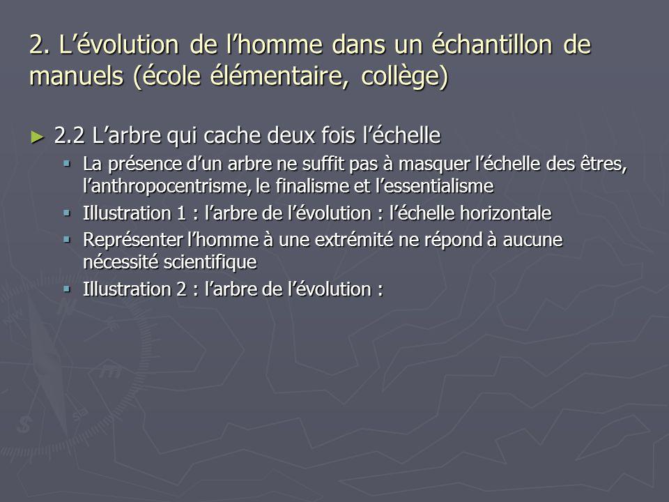 2. Lévolution de lhomme dans un échantillon de manuels (école élémentaire, collège) 2.2 Larbre qui cache deux fois léchelle 2.2 Larbre qui cache deux