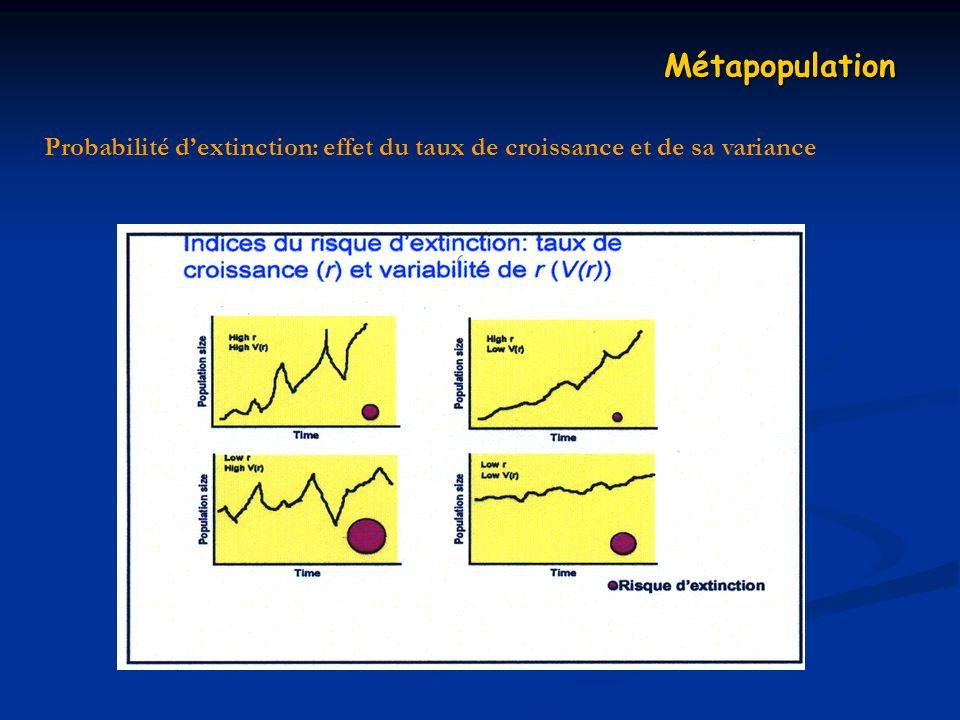 Probabilité dextinction: effet du taux de croissance et de sa variance Métapopulation