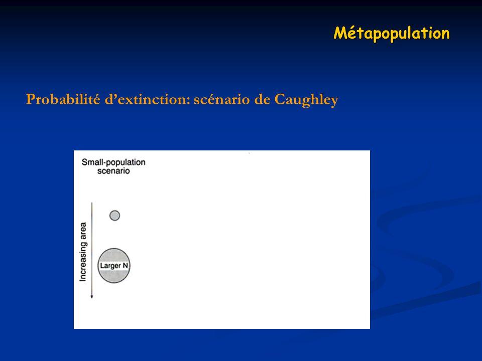Probabilité dextinction: scénario de Caughley Métapopulation