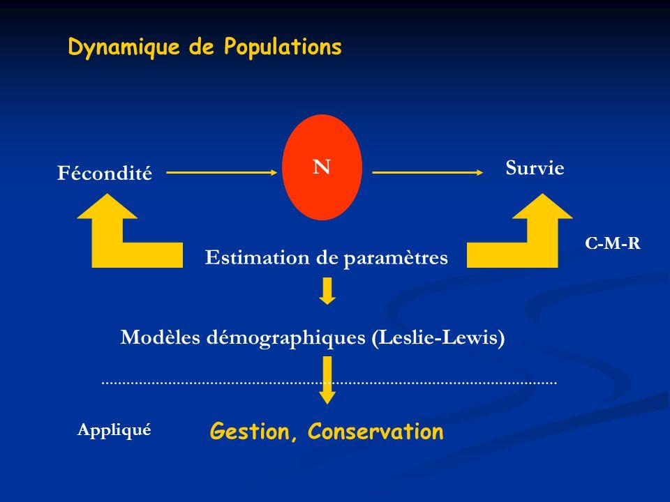 Dynamique de Populations N Fécondité Survie Estimation de paramètres C-M-R Modèles démographiques (Leslie-Lewis) Gestion, Conservation Appliqué