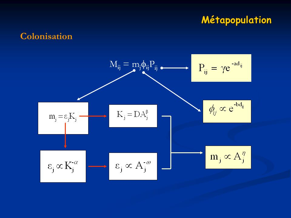 Colonisation Métapopulation M ij = m j ij P ij