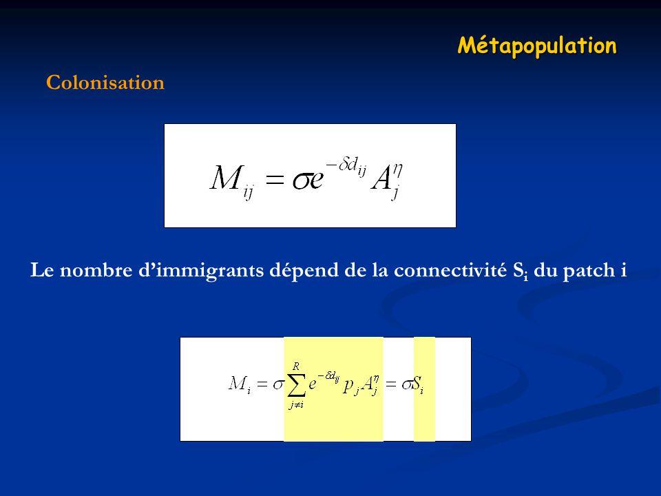 Colonisation Métapopulation Le nombre dimmigrants dépend de la connectivité S i du patch i