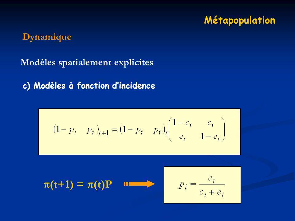 Dynamique Métapopulation Modèles spatialement explicites c) Modèles à fonction dincidence (t+1) = (t)P