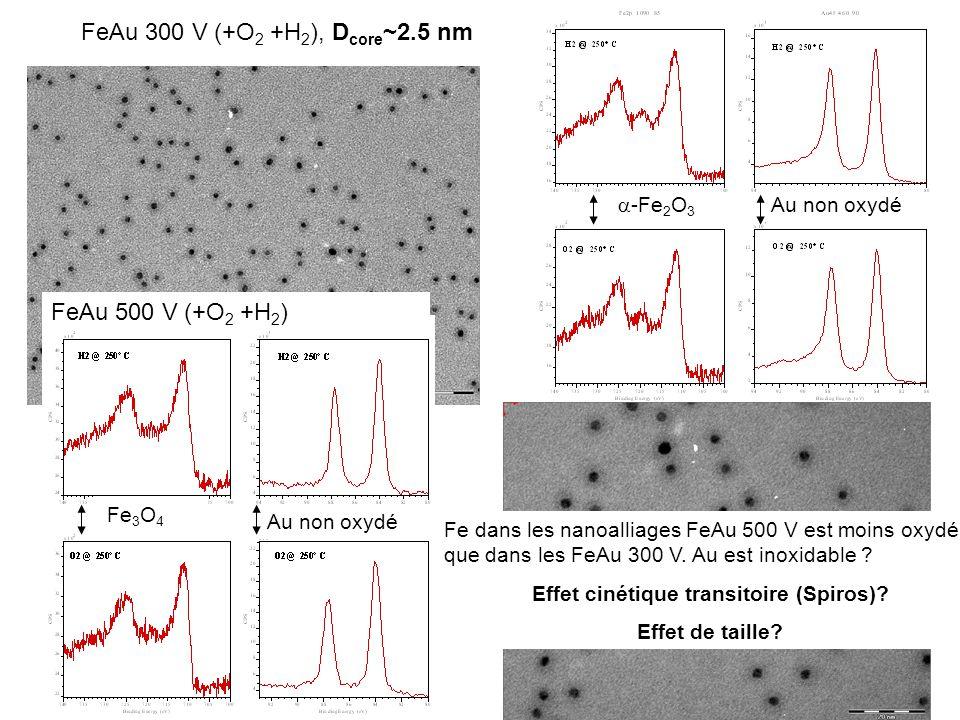 FeRh 300 V (+O 2 +H 2 ), D core ~2.5 nm -Fe 2 O 3 50 % Rh oxydé FeRh 500 V (+O 2 +H 2 ) Fe + -Fe 2 O 3 50 % Rh oxydé Fe dans les nanoalliages FeRh 500 V est moins oxydé que dans les 300 V.