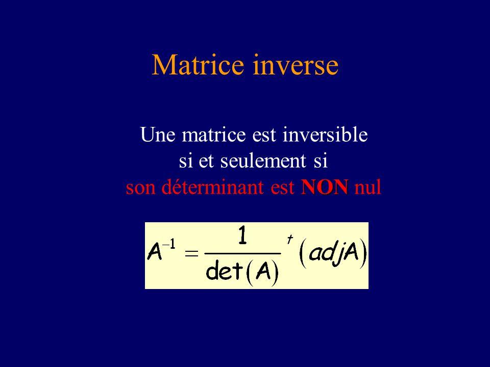 Matrice inverse NON Une matrice est inversible si et seulement si son déterminant est NON nul
